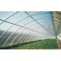 Buy cheap 4mm 6mm 8mm Clear Greenhouse Polycarbonate Sheets For Construction Roofing from wholesalers