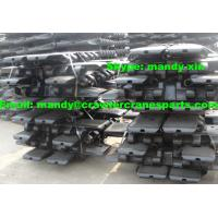 DEMAG CC2500 Track Shoe / Pad for Crawler Crane Undercarriage Parts