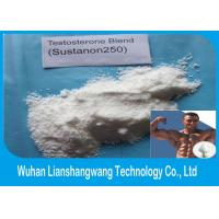 Buy cheap Sustanon 250 Bodybuilding Anabolic Steroids and Performance Enhancing Supplement from wholesalers