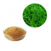 Buy cheap Brown Color Rosemary Antioxidant Extract Powder Leaf Part Natural Herb Extract from wholesalers