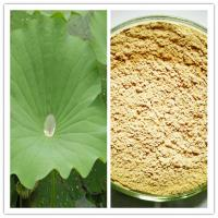Buy cheap Natural protect the heart 98% Nuciferine Weight Loss Lotus Leaf Extract from wholesalers
