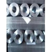 Stainless Steel & Galvanized Welded Wire Mesh