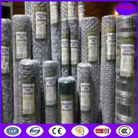 Buy cheap Galvanized Hexagonal wire mesh/chicken wire mesh from Dingzhou from wholesalers