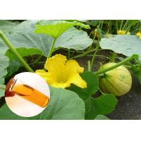 Buy cheap Food Grade Natural Plant Extract Oil Cold Pressed Pumpkin Oil Prostate Protection from wholesalers
