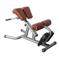 Buy cheap BFT-2033 reverse hyper extension,Roman Chair workout equipment from wholesalers