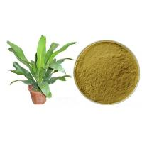 Buy cheap Pharmaceutical Grade Plant Extract Powder Muira Puama Extract Bark Part from wholesalers