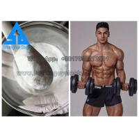 Buy cheap CAS 54965-24-1 Tamoxifen SERMs Steroids Pure Powder Nolvadex for Bodybuilding product