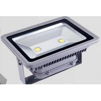 MeanWell Driver Outdoor LED Flood Light  100W 4000K - 4500K 5 years Warranty