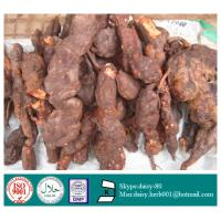 Buy cheap GMP 100% Natural Tuber Fleeceflower Root Extract from wholesalers