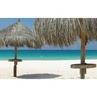 Buy cheap thatched umbrella from wholesalers