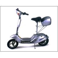 24V 250W Electric scooter/Electric motorcycle