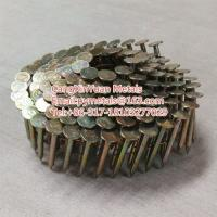 Buy cheap Guangce 3/4 Inch Coil Roofing Nails from wholesalers