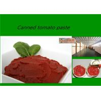 Red Delicious Fresh Tomato Sauce  Brix 28 - 30% With Excellent Taste