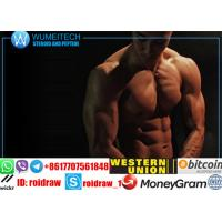 Buy cheap High Purity Men Sex Hormones Tadalafil Cialis To Gain Passion 171596-29-5 from wholesalers