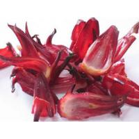 Buy cheap Roselle Extract Anthocyanins5%,25% UV  promote blood cell destruction from wholesalers