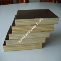 4x8feet top quality brown film faced plywood 18mm. Black Bedroom Furniture Sets. Home Design Ideas