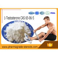 Buy cheap 65-06-5 Testosterone Anabolic Steroid 1-Testosterone 1-Test Cyp ( Dihydroboldenone ) from wholesalers