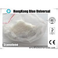 Bodybuilding Stanolone Testosterone Steroids Dihydrotestosterone Powder