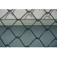 China Green Chain link fence on sale