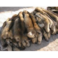 Buy cheap genuine raccoon dog fur plates from wholesalers
