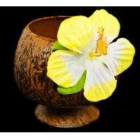 Buy cheap Coconut Cups from wholesalers