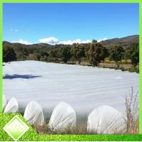 Buy cheap Anti UV PP Spunbonded Agriculture Non Woven Fabric For Plant Keeping Temperature product