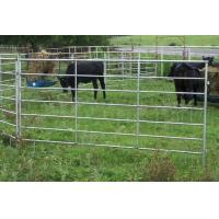 Buy cheap Horse Fence product