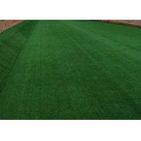 Buy cheap Synthetic School Artificial Grass product
