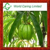 Buy cheap Herbal Extract Garcinia cambogia extract HCA 50%-75% ingredient for weight loss product