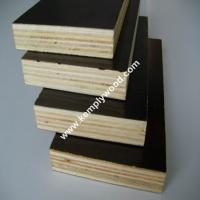 Buy cheap Phenolic film faced plywood board price/ structural plywood/ film faced shuttering plywood from wholesalers