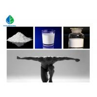 Buy cheap CAS 63-05-8 Anabolic Androgenic Steroids Powder 4 DHEA 4 Androstenedione from wholesalers