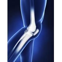 nandrolone knee pain