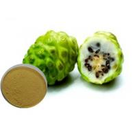 Buy cheap Noni fruit powder from wholesalers