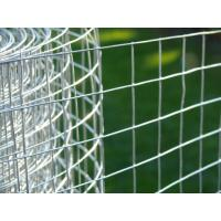 Buy cheap 0.5mm Galvanized Plastering Welded Wire Fabric With High Tensile Strength from wholesalers