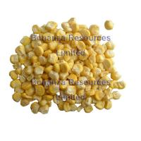 Buy cheap Freeze Dried Sweet Corn Ingredients of Instant Soup Noodles from wholesalers