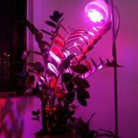 Buy cheap LED Grow Light, 90 to 160/190 to 265V AC Voltage product