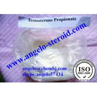 Buy cheap Testosterone Propionate Powder Bodybuilding Anabolic Steroid Injection 57-85-2 Test PRO from wholesalers