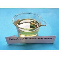 Buy cheap Equipoise Boldenone Undecylenate Powder 13103 34 9 , Most Effective Anabolic Steroid from wholesalers