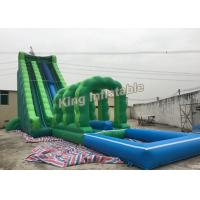 Buy cheap Attractive Commercial Outdoor Giant Long Green Blow Up Water Slides For Adult from Wholesalers