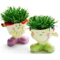 Buy cheap DIY flower pot from wholesalers
