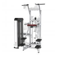 Buy cheap Commercial Body Building Strength Gym Fitness Equipment Easy Chip Dip from wholesalers