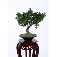 Buy cheap Hand Crafted Faux Indoor Pine Tree Minimal Care Beautiful Artificial Arrangement from wholesalers