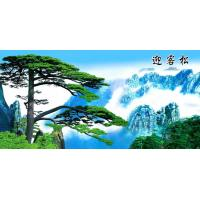 Buy cheap Lenticular Images from wholesalers