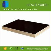 Buy cheap Best price canadian maple 8 - 18mm waterproof plywood produc t list from wholesalers