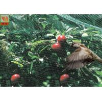 Buy cheap Green Garden Mesh Netting Polypropylene Bird Netting Hole Open 10mm * 12 Mm from wholesalers