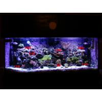 Buy cheap LED aquarium light remote control from wholesalers