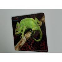 Buy cheap Oil Varnishing 3D Lenticular Funny Refrigerator Magnets UV Offset product