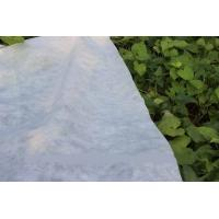 Buy cheap Eco-friendly Ground Cover PP Agriculture Nonwoven Fabric Soil Moisture Distribution from wholesalers
