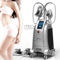 Buy cheap Body Slimming And Shaping Cryolipolysis 2 Handles Fat Freezing Machine Weight Losing Slimming Machine product