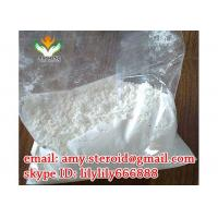 Muscle Growth Testosterone Steroid Hormone